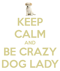 Crazy Dog Lady Meme - crazy dog lady meme 28 images 345 best images about crazy cat