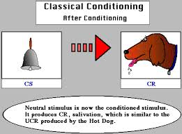 educational psychology interactive classical conditioning