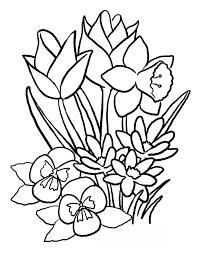 flower coloring pages 13 coloring page coloring pages