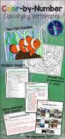 best 25 classification of vertebrates ideas on pinterest blank