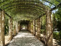41 best garden trellis images on pinterest outdoor spaces