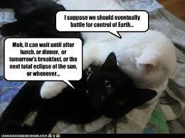 Ceiling Cat Meme - 59 ceiling cat basement cat ceiling cat vs basement cat leather