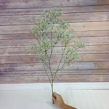 baby s breath flowers how much baby s breath do i need