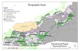national forests in north carolina home