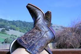 the wife of a dairyman churned in cali mama got some new boots