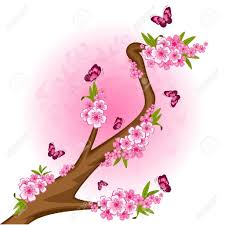 beautiful drawings of butterflies on flowers beautiful flower and