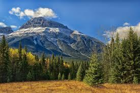 alberta banff national park mountain canada rocky mountains banff