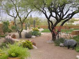 triyae com u003d backyard desert oasis ideas various design