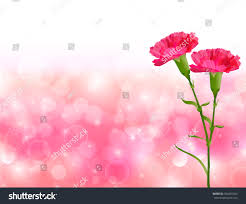 mothers day carnation flower background stock vector 392891425