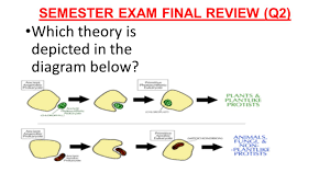 semester exam final review q1 ppt download