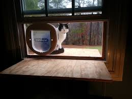 Exterior Cat Door Doug Cone Maker Developer Entrepreneur