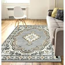 3x5 Area Rug Ikea Area Rugs Informal Carpet Area Rugs Ideas Enchanting Carpet