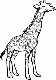 mask templates google search masks costumes printable giraffe