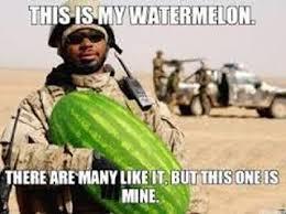 Watermelon Meme - watermelon incorporated home