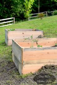 slab wood raised gardens landscape u0026 gardens pinterest