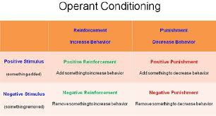 organizational behavior learning