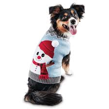 dog clothes puppy u0026 dog u0026 apparel petco