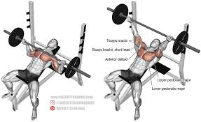 the incline reverse grip barbell bench press is arguably the most
