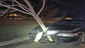 arrest for driving with 15 foot tree embedded in