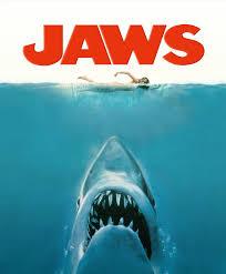 5 most dangerous shark species