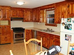 Cost New Kitchen Cabinets New Kitchen Cabinets Cost U2013 Colorviewfinder Co