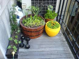 What To Use For Climbing Plants - diy how to plant a personal garden in a small urban space