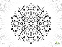 daisy printable color pages adults free coloring pages
