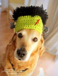 Chihuahua Halloween Costume Frankentstein Hat Dogs Halloween Costume Large Dogs