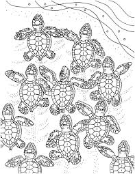 baby sea turtles coloring page embroidery pattern sea