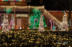 8 botanical garden christmas lights to consider for decorating