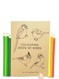 bird colouring book u2013 sow