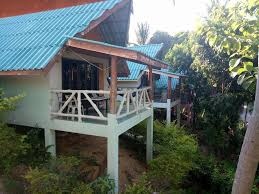 paradise bungalows haad rin thailand booking com