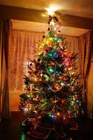 lighted christmas tree colorful lighted christmas tree pictures photos and images for