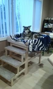 Hi Can Bed Best 25 Raised Dog Beds Ideas On Pinterest Elevated Dog Bed