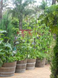 Vegetable Garden Soil Mix by Mix The Soil Vegetable Gardening In Barrels 2123 Hostelgarden Net