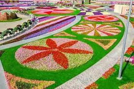 miracle garden dubai book tickets u0026 tours getyourguide com