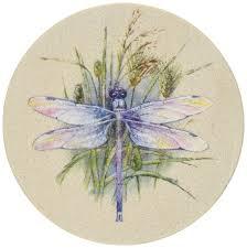 amazon com thirstystone dragonfly coasters coasters