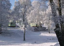 silver trees cannock staffordshire