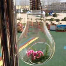 aliexpress com buy new glass bulb lamp shape flower water plant