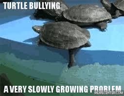 Turtle Meme - raising awareness for turtle bullying by mahtianni meme center