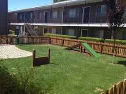 Backyard Agility Course Cambridge House Rentals Davis Ca Apartments Com