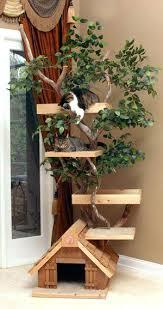 cool cat trees senalka