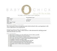 birth plan template 35 template lab