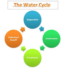learning ideas grades k 8 bill nye video the water cycle