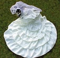 dog wedding dress dog wedding dress puppy bridal gown bridal dresses for dogs puppies