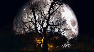 halloween trees background halloween moon wallpaper hd