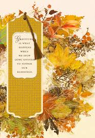 things to write in a thanksgiving card gratitude is what happens when we notice our blessings