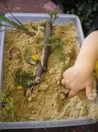 Gardening Crafts For Kids - garden activities for kids u2013 fun garden crafts for kids