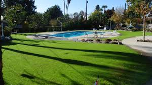 a park like setting from my backyard