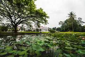 Bogor Botanical Garden by Ultimate Travel Guide To Jakarta Indonesia Top Things To Do In
